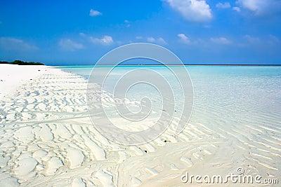 Beautiful topical white sand beach
