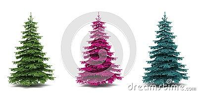 Beautiful tree a fur-tree