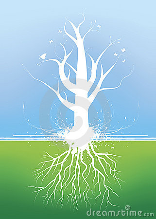 Free Beautiful Tree With Roots Royalty Free Stock Photo - 3985315