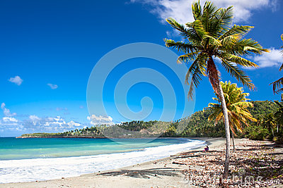 Beautiful tropical  beach in Baracoa, Cuba