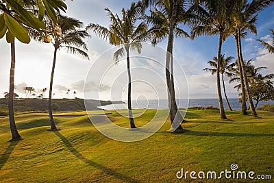Beautiful tropical coastal golf hole at sunrise