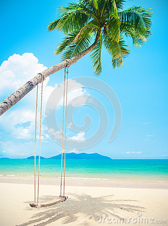 Free Beautiful Tropical Island Beach With Coconut Palm Trees And Swing Royalty Free Stock Photo - 66565395