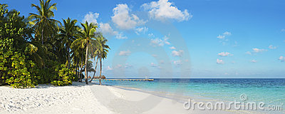 Beautiful tropical panorama