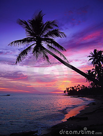 Free Beautiful Tropical Sunset Royalty Free Stock Images - 1293579
