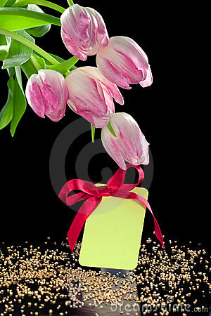 Beautiful tulips and a blank gift tag with bow