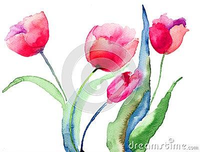 Beautiful Tulips flowers