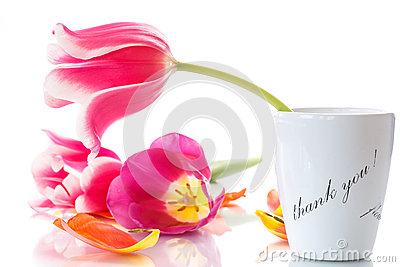 Beautiful tulips in a vase with gratitude
