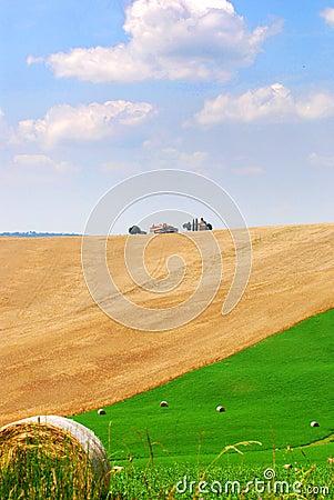 Beautiful Tuscany fields