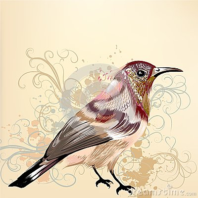 Beautiful vector background with hand drawn vector colorful bird