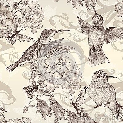 Free Beautiful Vector Seamless Wallpaper With Humingbirds In Vintage Royalty Free Stock Images - 34123569
