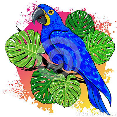 Beautiful vector summer drawing with parrot, palm leaves Vector Illustration