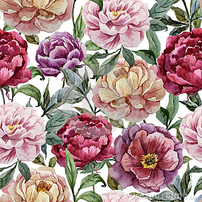 Free Beautiful Vector Watercolor Pattern With Peonies Royalty Free Stock Photo - 46918075