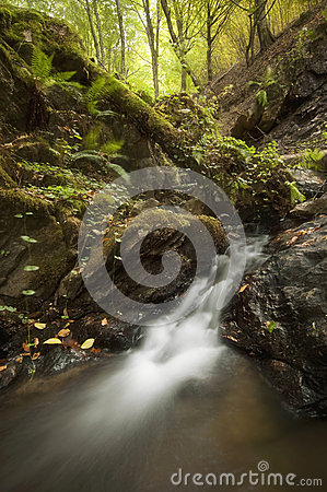 Beautiful waterfall on mountain river in a forest in autumn