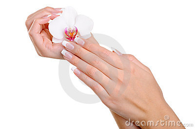 Beautiful well-groomed  female hand with flower