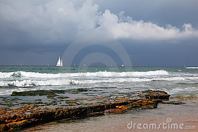 Beautiful white sails on the horizon