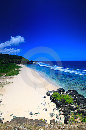 Beautiful white sand tropical beach