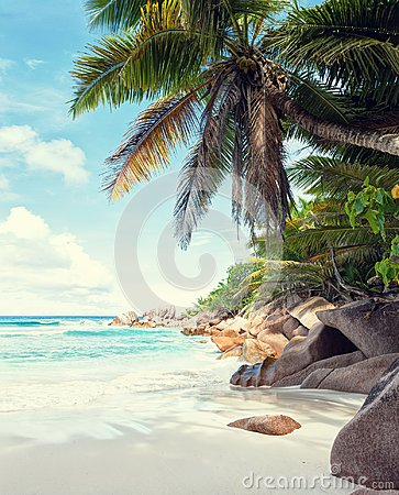 Free Beautiful White Sandy Beach Surrounded By Granite Rocks And Coconut Palm Trees. La Digue, Seychelles. Toned Image Stock Photo - 109587780