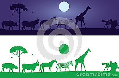 Beautiful Wild Animals Wall Decal