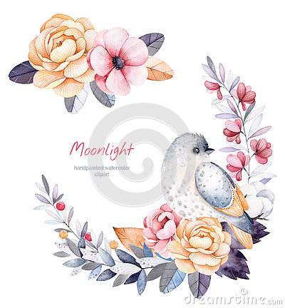 Free Beautiful Winter Collection With Branches,cotton Plants,flowers,little Bird Stock Photo - 78636250