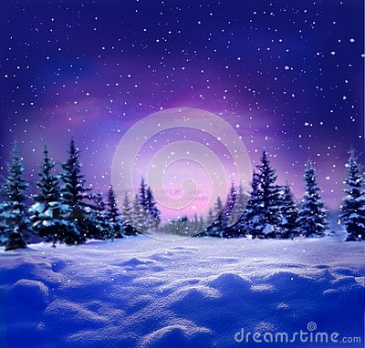Free Beautiful Winter Night Landscape With Snow Covered Trees.Christ Stock Photo - 131095950