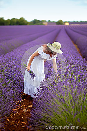 Beautiful woman in field of lavender.  Provence, France.