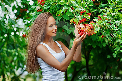 Beautiful woman picking guelder rose berries
