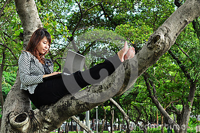 Beautiful woman sit on the tree and playing laptop