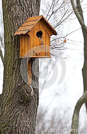 Beautiful wooden birdhouse