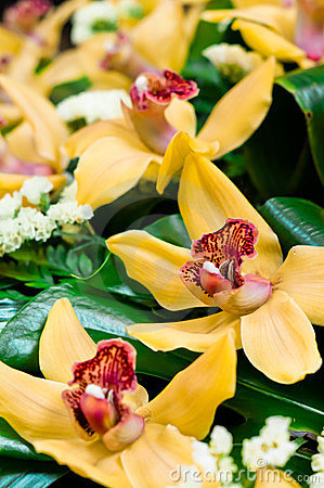 Beautiful yellow orchids bouquet