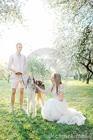 Free Beautiful Young Couple In Wedding Dress With Greyhounds In Park Stock Image - 75551041