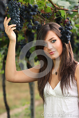 Beautiful young girl picking grapes