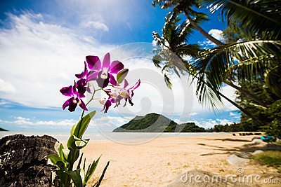 Beautifull tropical beach in Thailand