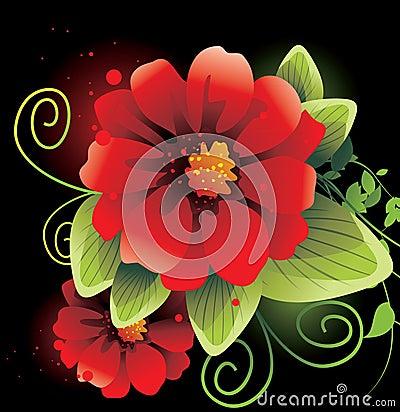 Beauty flower close up
