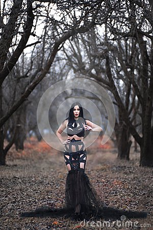 Free Beauty Gothic Woman In Sexy Dress In The Forest Royalty Free Stock Image - 63723396