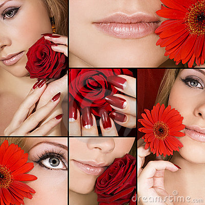 Free Beauty In Details Royalty Free Stock Photos - 6459528