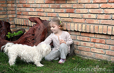 Beauty little girl play with Maltese puppy