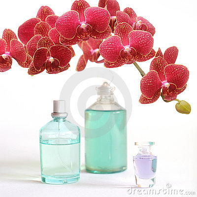 Beauty set with red orchid
