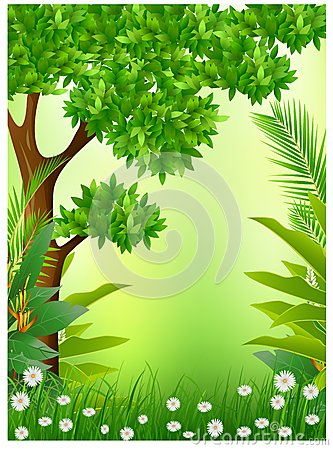 Beauty tropical forestbackground