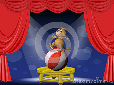 A beaver balancing with a ball