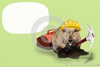 Beaver Labor