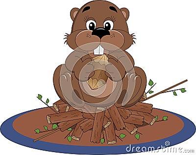 Beaver sitting on dam