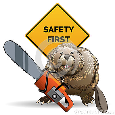 Free Beaver With A Chainsaw Stock Photos - 48501763