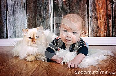 Bebé y gato