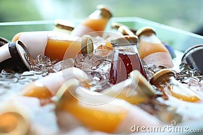 Bebidas del frío
