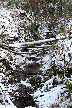 Bed of a stream in the snow