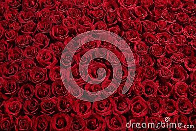 Bed van rozen