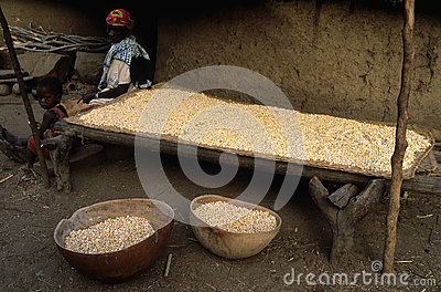 Bediks - Senegal Editorial Photo