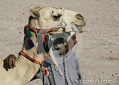 Bedouin Editorial Image