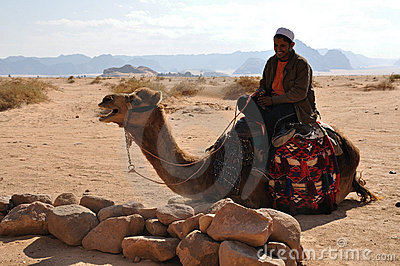 Bedouin & Camel Editorial Photo
