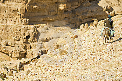 Bedouin child Editorial Stock Photo